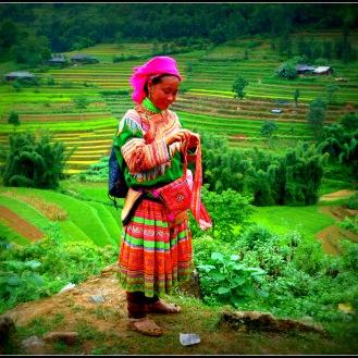 tissus brodés vietnamiens